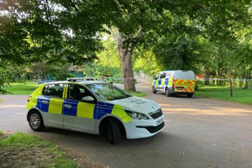 Girl, 16, charged with attempted murder as man, 54, fights for life