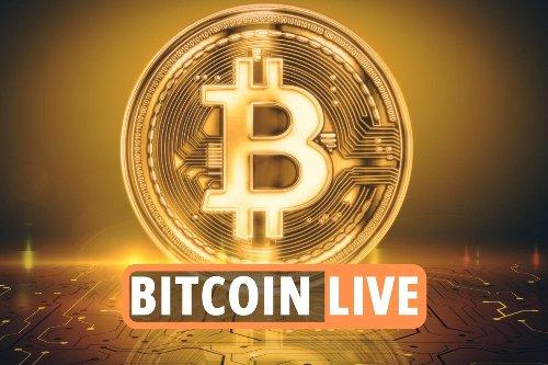 Bitcoin rises again as Ethereum & Dogecoin lose steam despite Elon Musk on SNL