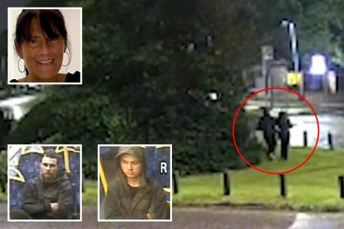 CCTV shows mum grabbed in street before she was found 'bludgeoned to death'