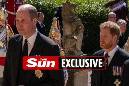 Princes to give separate speeches at Diana's statue unveiling as rift continues