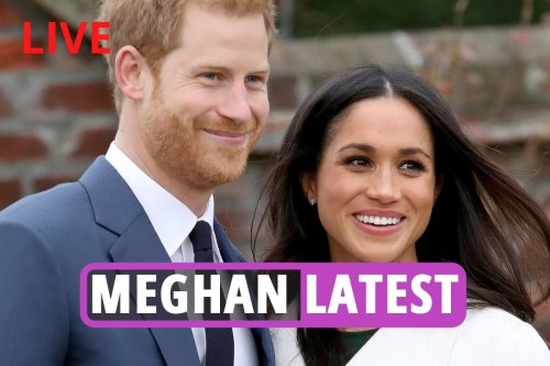 'Ambitious' Meghan 'secretly plot to marry Harry to further her career'