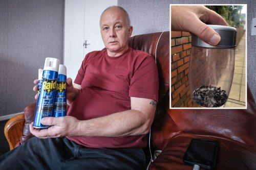 Man's house was infested with flies and maggots after neighbour lay dead for weeks