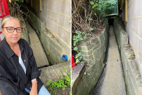 Residents fury as raw sewage gushes in 'open sewer' behind homes attracting rats