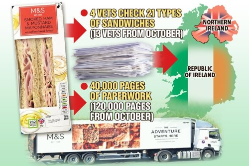 Four vets & 100s of forms needed to get M&S cheese & ham sandwiches into Ireland