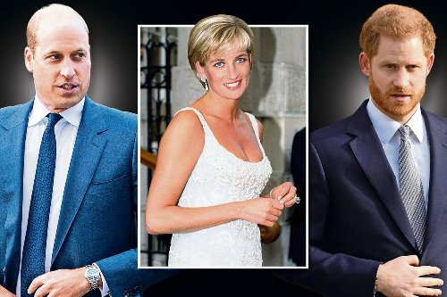 Kate 'helping Prince William and Harry put on united front at Diana reunion'