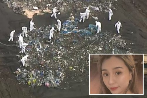 Police searching for missing woman find 'human remains' in landfill site