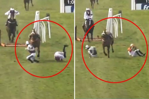 Watch terrifying moment champion jockey Brian Hughes is barged over by loose horse during carnage at Sedgefield