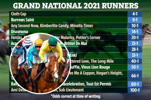 Grand National 2021 runners: Confirmed line-up of 40 as Storyteller OUT, Cloth Cap favourite for TODAY's race at Aintree