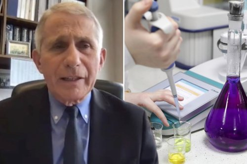 Fauci admits US sent 'modest' $600k to Wuhan lab at center of Covid 'leak' story