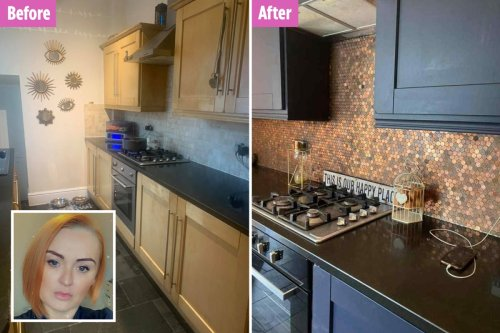 Woman transforms dull kitchen into masterpiece for just £75 with 1p coins