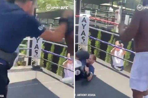 Watch Joshua 'floor' ex-UFC star with jumping knee as he enjoys MMA training