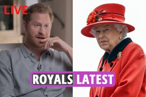 Selfish Harry 'doesn't give a DAMN about Queen or William & may destroy them'