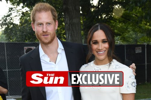 Harry & Meghan-backed 'ethical' investment firm has put millions into oil