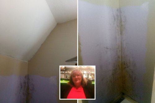 Mum-of-seven unable to breathe in mouldy flat & forced to chuck £1,000 clothes