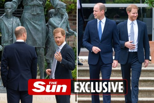 William's sweet gesture to Harry while thanking friends for Diana statue