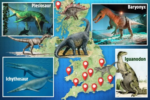 Where to find dinosaur remains in the UK, from Yorkshire to Skye and Somerset