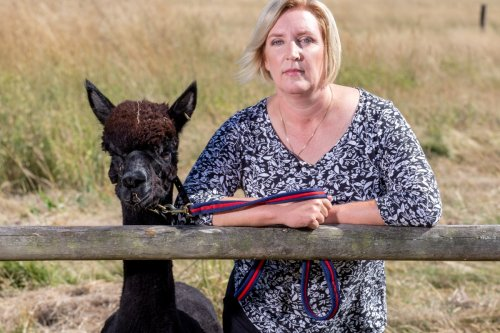 Desperate Geronimo's owner calls on Boris Johnson to 'grow a pair' and step in to save his skin
