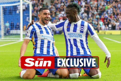 Brighton & Hove Albion fans are top of the table… for the most GCSEs