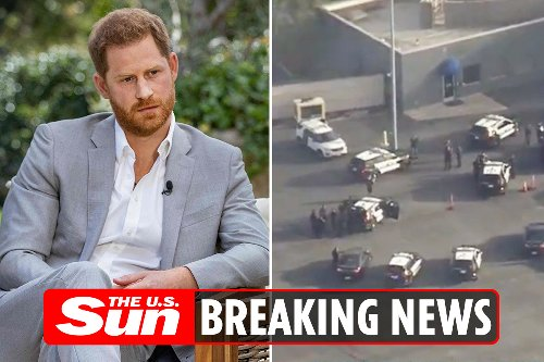 Harry scare as cops chase car on LAX runway just as Duke arrives to fly to UK
