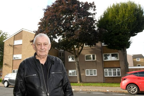 OAP, 81, forced to live in darkness without TV as 70ft trees block his window