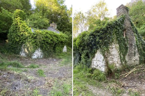 Can you see what makes this tiny Welsh cottage a perfect secret hideaway?