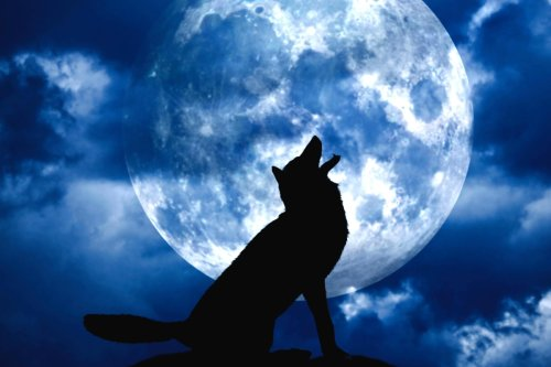 What the January Full 'Wolf Moon' means for your star sign