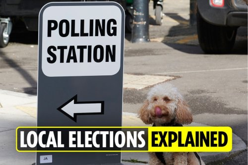 Local election declaration times: All the key timings you need to know TODAY and this weekend