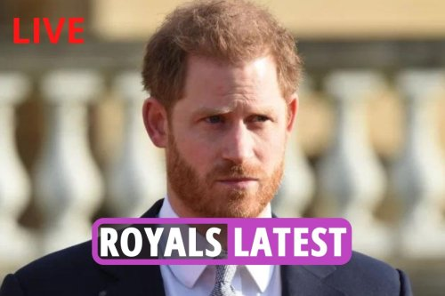 Prince Harry's two CLOSEST royal allies 'are running out of patience' with Duke