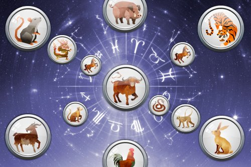 Chinese zodiac daily: What your horoscope means today, Friday April 16, 2021
