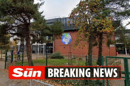 Girl, 11, collapses and dies after going into cardiac arrest at school