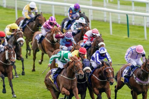 Templegate's runner-by-runner guide to massive Ayr Gold Cup on Saturday