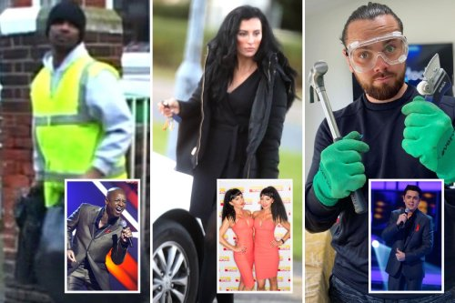 Pop stars who quit fame for normal jobs - as a farmer, binman and car salesman
