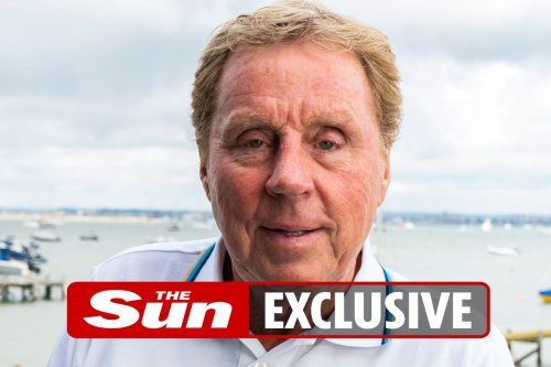 Redknapp: Ashley offered me DAILY jet from Bournemouth to take the Newcastle job