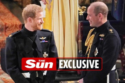 Harry ruins chance of making up with Wills after leaking private Meg chats