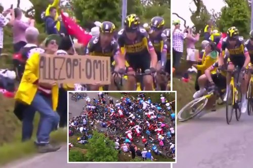 What was on Tour de France fan's sign that caused biggest crash in decades