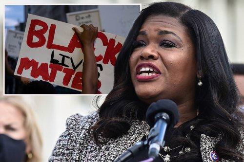 Dem Rep Cori Bush praises Black Lives Matter activist who called for 'pig' police officers to be 'fried like bacon'