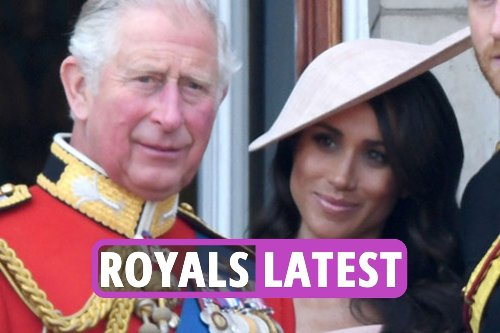 Prince Charles has a secret code name for Meghan Markle and royal fans LOVE it