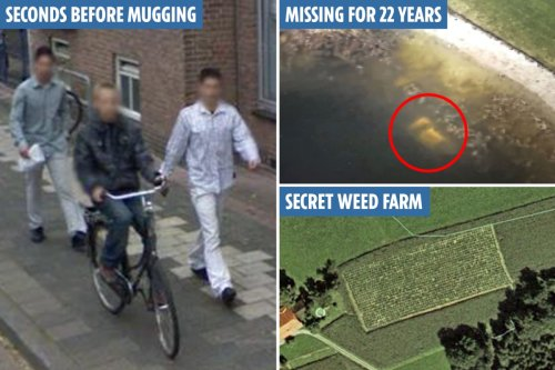 The staggering crimes solved by Google Earth - including murders, missing people and secret drug farms