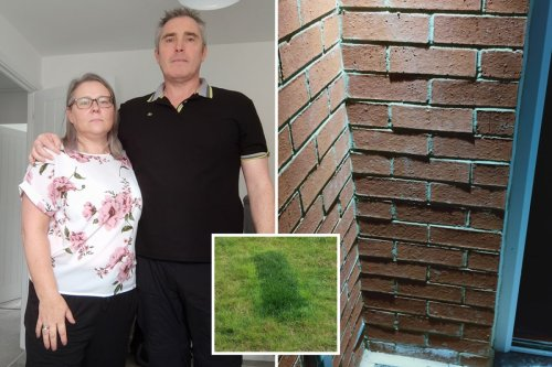 Dad blasts 'absolutely shambolic' £270k Taylor Wimpey home with 381 defects