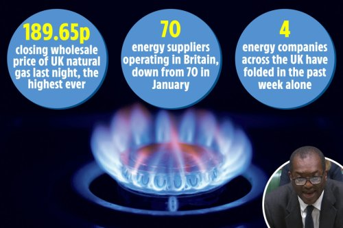 More energy firms to fold with millions facing hiked gas and electric bills