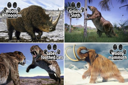 DNA splicing could bring beasts back to life – including woolly mammoth and dodo