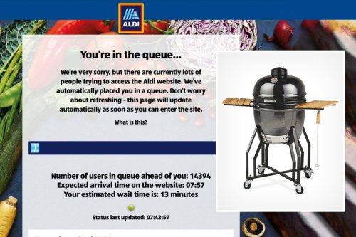 Thousands of Aldi shoppers QUEUED to get on its website to buy garden range