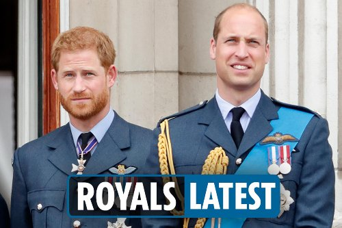 William & Harry have been 'arguing for last 18 months', says mutual friend