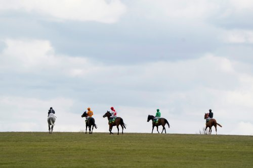Tips and race times for Cheltenham and Newmarket in Templegate's ultimate guide