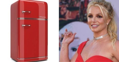 Britney Spears' Secret Codes Cracked As She Posts A Picture Of A Red Fridge