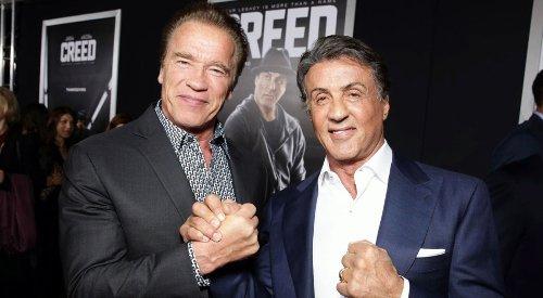 Who Has A Higher Net Worth: Arnold Schwarzenegger Or Sylvester Stallone?