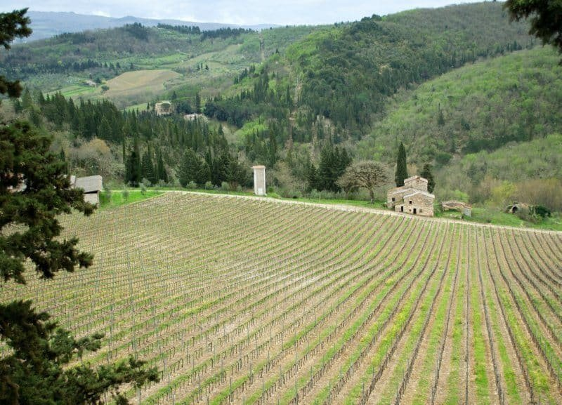 Tavarnelle Chianti - The Good Life