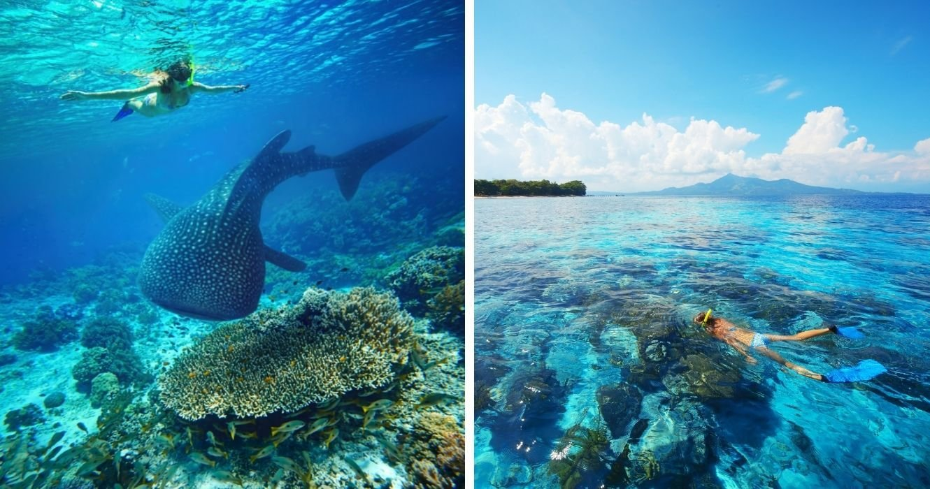Reef Adventures: Places Where You Can See An Entire Underwater World Just By Snorkeling