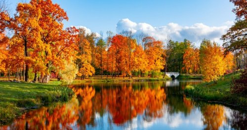 Scenic South: A Guide To The Best Fall Foliage In The Southeastern U.S.