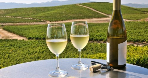 The Ultimate Guide to Wine Tasting in Napa